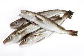 Arabic Fish  (0)