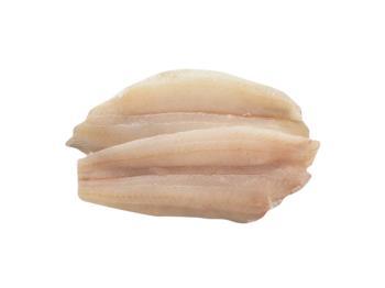 Philippine Fish (0)